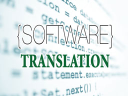 software translation