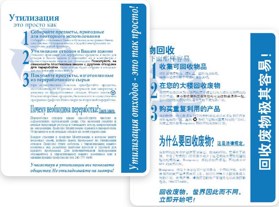 BVB document translation