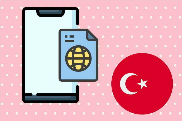 Turkish Software Translation
