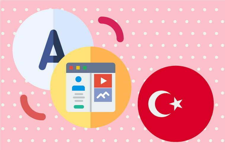 Turkish Website Translation