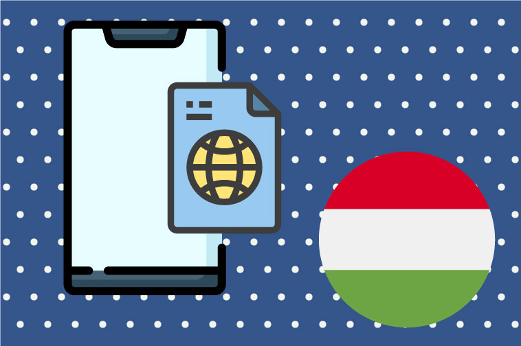 Hungarian Software Translation