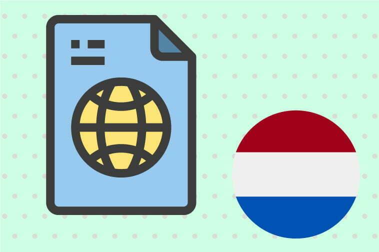 Dutch Document Translation