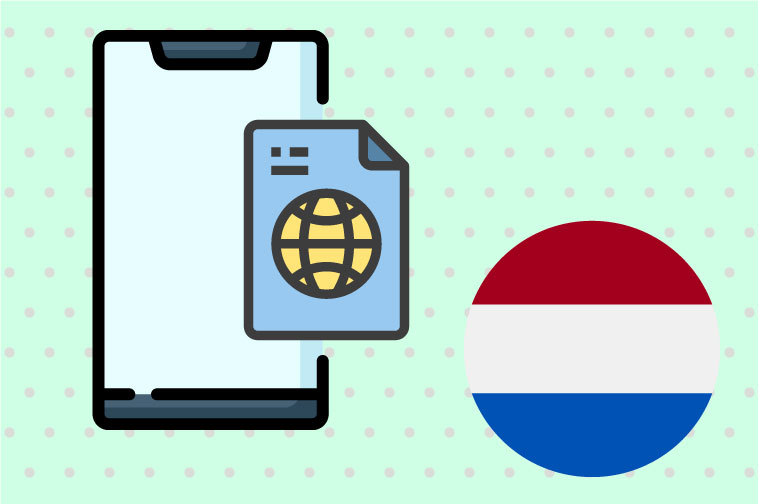 Dutch Software Translation