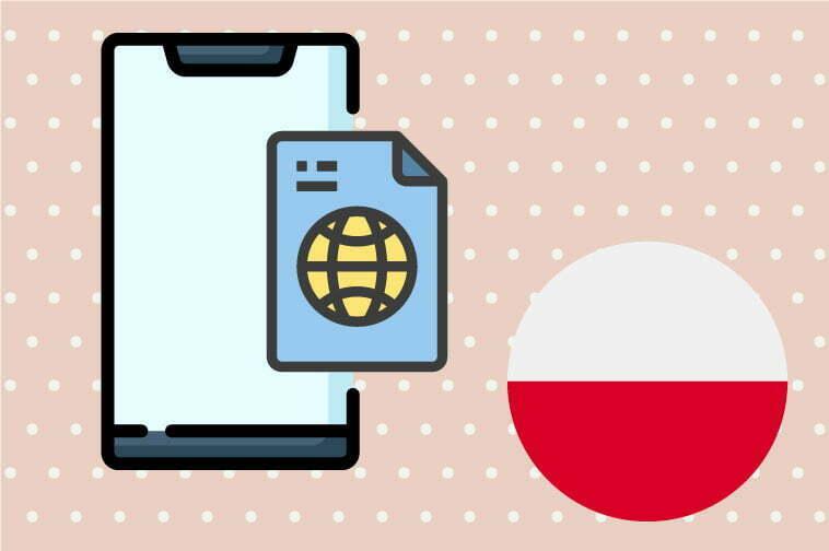 Polish Software Translation