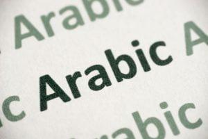Modern Standard Arabic Translation