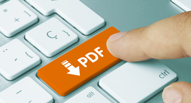 Importance of Accessible PDF Document