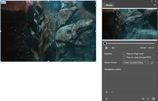 InDesign Media Interactive Video & Audio